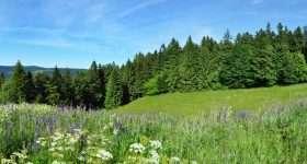 Duitsland Thuringen heuvellandschap