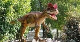 Schoolreisje Dinoland Zwolle - Dilophosaurus