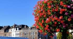 Nederland Maastricht bloemen scaled