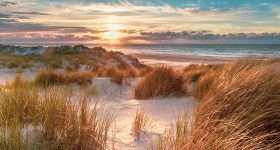 Nederland Texel duinen scaled
