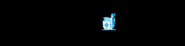 Logo Steenwijker Courant